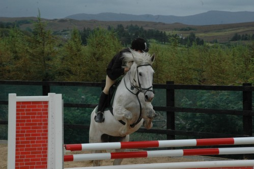 Gaeltcaht Riding School Open Day 030