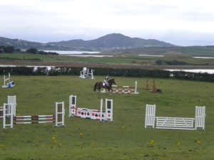 The jumps in use at Liz & Ryans